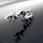 Jaguar XK8 XKR Chome Leaper