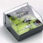 Genuine Jaguar XK8 XKR X100 Spare Bulb Kit